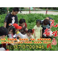 班级亲子春游活动深圳哪里好玩又实惠,深圳九龙生态园