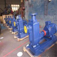 80ZW40-50卧式电动齿轮输油泵 自吸油泵 专业耐高温齿轮泵-厂家直销