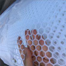 塑料平网塑料网 养殖网床 鸡鸭养殖网