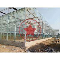 玻璃温室钢结构智能大棚——青州瀚洋温室