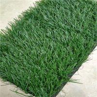 时宽30mm军绿色休闲场所PE环保景观假草坪,地面铺设别墅绿化绿地毯人工草坪