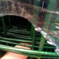 利港丝网批发浸塑荷兰网电焊网|圈地果园防护网|绿色围鸡网