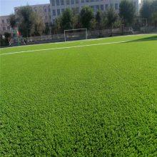 假草坪地毯 郑州假草坪 户外绿色人造地毯