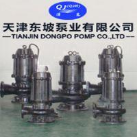 天津东坡250WQ600-25-75污水潜水泵