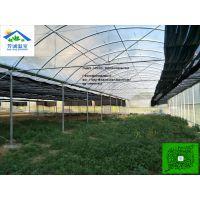 工程竣工,温室图片共赏,惠州薄膜连栋大棚