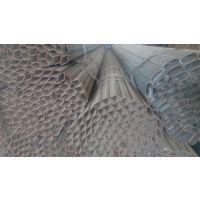 批发天津大棚管 镀锌矩形管 Q235薄壁镀锌钢管