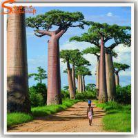 仿真面包树 大型室内外工程装饰 人造非洲猴面包树 广东仿真树厂家