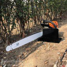挖树成本小 汽油链条挖树机 润丰 中国红枫移树机