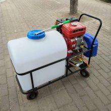 直销农用小型喷雾器家用农药喷洒机105升汽油杀虫机