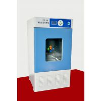 河北人工气候箱PRX-450B特价销售