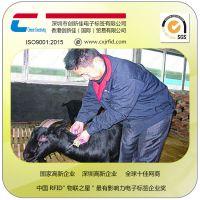 畜牧业农场养殖管理动物耳标 猪马牛羊rfid电子芯片耳标 追踪溯源 统计盘点生长监测