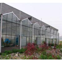 专业建造智能温室大棚,价格低质量好。