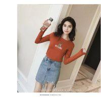 秋装新款女装长袖打底衫批发纯棉薄款女装韩版刺绣T恤批发工厂直销货源