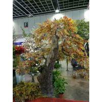 仿真大树假树假榕树仿真大型植物装饰酒店大厅布景实木树干现货一颗 欢迎来工厂看