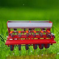 苜蓿草种子播种机价格 白菜萝卜种子种植机 免间苗精播机型号