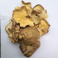 庆元食用菌干货香菇产地直批 菜菇破菇南北土特产散装批发