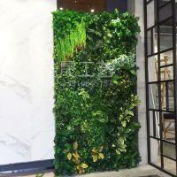 东莞浩晟塑料绿植墙 装饰幼儿园餐厅会展中心仿真绿植 PE材质