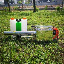 新款农用小型烟雾机 便携式汽油弥雾机 180W热力烟雾机志成机械