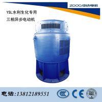 YSL系列水利、生化行业专门制造的电动机中达电机ZODA厂家