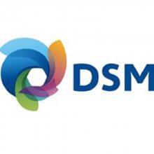 荷兰DSM PBT TV6 241 T耐冲击PBT