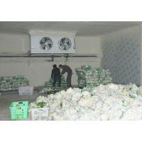 双流蔬菜保鲜库/白家生鲜/海鲜冷库安装/白家肉制品冻库