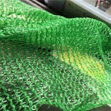 便宜的盖土网 盖煤粉塑料网 2针盖土网