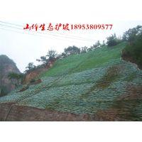 http://himg.china.cn/1/4_703_237214_789_559.jpg