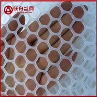 育雏塑料网厂价直销 圆孔养鸡网什么价位 平铺塑料网床哪里卖