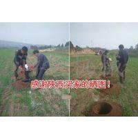 果园立杆打孔机 荒山植树挖坑机 手提式地钻机