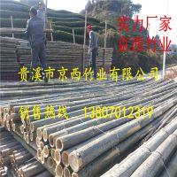供应搭蘑菇架用的5米-8米竹子 粗竹杆