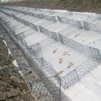 河北盈石石笼网 护坡生态格网、河道生态治理绿格网、绿滨垫