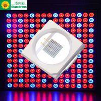 厂家直销添光彩照明 LED3030紫光灯珠 贴片灯珠2W 3030紫光395波长 400波长