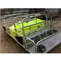 自动化养猪设备 母猪产床厂家生产定制 腾诚畜牧