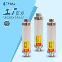 厂家直销XRNT1-12/250高压限流熔断器 10KV高压熔断器 XRNT高压熔断器
