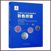 供应厂价产品目录印刷定做 胶装彩色说明书 16开画册设计 深圳印刷厂