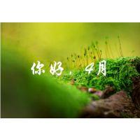 掌乾财经学炒股:人间四月or股市四月
