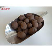 南京建筑陶粒 陶粒多少钱一方 15855419599