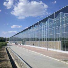 平顶山温室大棚建造高级供应商 平顶山连栋玻璃温室大棚造价 河南华科温室工程有限公司