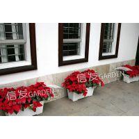 供应窗台阳台花盆 可种树种菜 储水式花盆 经久耐用