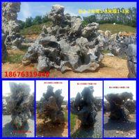 深圳哪里有太湖石 园林景观石材批发基地 深圳太湖石厂家直销 名富奇石场