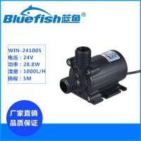 蓝鱼WIN-241005水陆两用工业泵24V直流无刷潜水泵1000L/H大流量抽水泵
