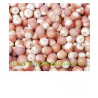 供应五谷庄园膨化芡实粉