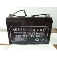 金派克蓄电池6-FM-150/12V150AH阀控式免维护