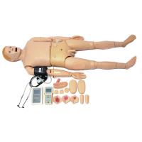 高智能成人护理模型人(心肺听诊与血压测量),心肺听诊与血压测量一体功能护理人