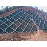 边坡专用绿化资材昆明寻甸县技术部门提供