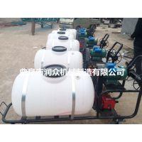 高压泵喷雾器 汽油自走式喷雾器 润众