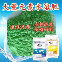 河北旺润草莓专用水溶肥,13-7-40高钾水溶肥,滴灌水溶肥厂