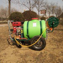 供应直销大棚蔬菜喷雾器环卫绿化驱虫机汽油动力打药车