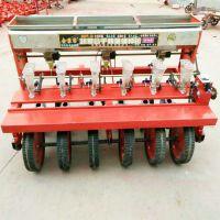 高粱精播机 免间苗小粒种子播种机 油菜下种准确下种机