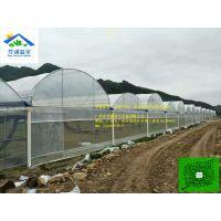 芳诚温室蔬菜大棚!清明时节雨纷纷!安装工程人员风雨兼程二十天内完成了一万平方米的大棚,创造了奇迹!